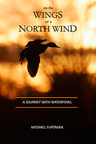 On The Wings of a North Wind cover